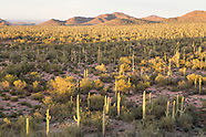 Ironwood National Monument