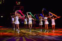 Cheerleaders Brooklyn Nets  - 03.01.2015 - All Star Game -Paris - Zenith<br /> Photo : Dave Winter / Icon Sport