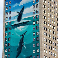 Humpback Whale Mural on Broderick Tower by Wyland in Detroit, Michigan<br />
