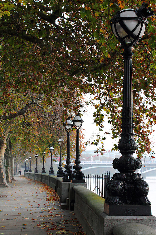 A grey autumn morning along the Chelsea Embankment, along the River Thames