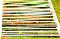 Aerial view of Flower Nursery, Flower Palette Aerial views of artistic patterns in the earth.