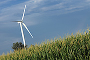 BROOKSTON, IN - JULY 8: General view of a wind turbine framed by a field of corn at the Meadow Lake Wind Farm owned by Horizon Wind Energy on July 8, 2010 in Brookston, Indiana. (Photo by Joe Robbins)