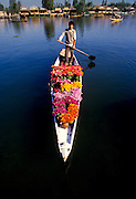 A flower vendor in his shikara boat on Lake Dal in Shrinagar Kashmir India