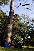 Sao Paulo_SP, Brasil...Mulher lendo embaixo da arvore do Parque do Ibirapuera...A woman reading under the tree in Ibirapuera Park...Foto: MARCUS DESIMONI / NITRO