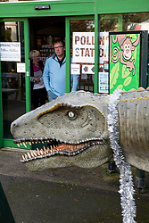 © Licensed to London News Pictures. 12/12/2019. Hayle, UK. Voters were met with a dinosaur outside the polling station at Paradise Park Hayle in Cornwall as polling takes place. Photo credit: Mark Hemsworth/LNP