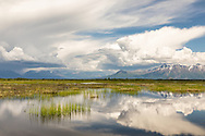 Storm clouds approach the Talkeetna Mountains and Palmer Hay Flats State Game Refuge in Southcentral Alaska. Spring. Afternoon.