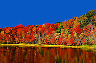 Fall Foliage Tour Berkshires New England