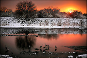 .Cranes dabble in a flood-control diversion channel at the north end of Fourth Street. The glowing sunset Wednesday heralded a return to clear weather after two days of snow, although a trace fell overnight in Albuquerque. For the year so far, the city has received 11.93 inches of precipitation, 2.6 inches above normal.