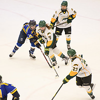 2nd year forward Sam Geekie (15) of the Regina Cougars in action during the Women's Hockey home game on February 9 at Co-operators arena. Credit: Arthur Ward/Arthur Images