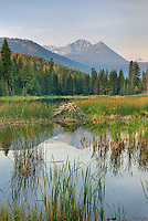 Black Pine Lake in the Okanogan National Forest of the North Cascades, Hoodoo Peak is in the distance, Washington USA