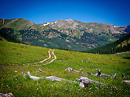 Landscape of Collegiate Peaks Wilderness Colorado Rocky Mountains