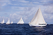Carriacou sloops sailing in the Old Road Race at the 2011 Antigua Classic Yacht Regatta.