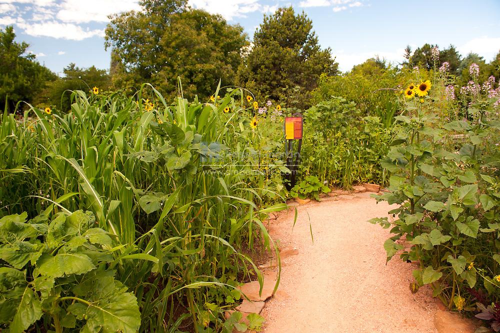 Sacred Earth Garden