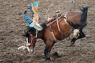 Ranch Hand Saddle Bronc riding at the Vale 4th of July Rodeo on July 2, 2016 in Vale, Oregon.