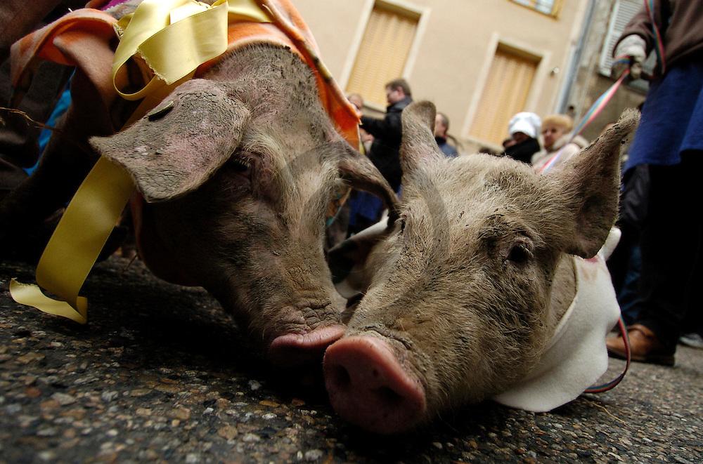 27/11/04 - THIERS - PUY DE DOME - FRANCE - Saint Eloi des Gogues. Fete votive celebrant la mort du cochon - Photo Jerome CHABANNE