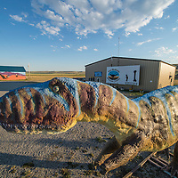 dinosaur in front of the two medicine dinosaur musieum, bynum, montana