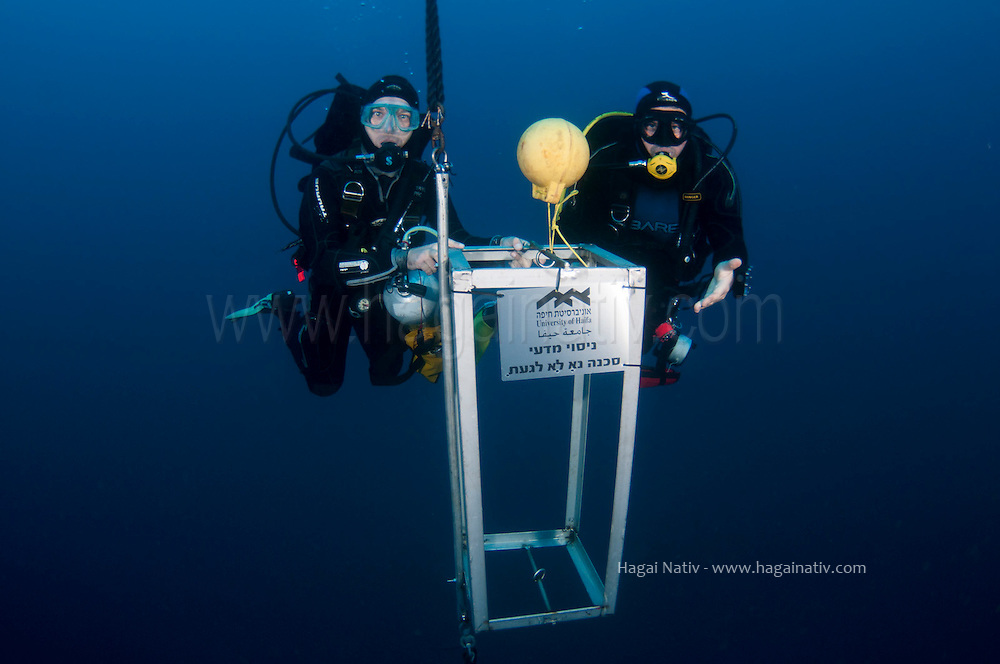 underwater researchers underwater researchers installing a mooring line to accomodate a CTD