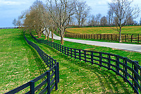 Fence lines of horse farms, Pisgah Pike, Versailles (near Lexington), Kentucky USA