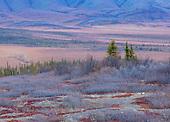 Canada- The Yukon