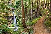 LOWER LEWIS RIVER FALLS, SKAMANIA COUNTY, WASHINGTON