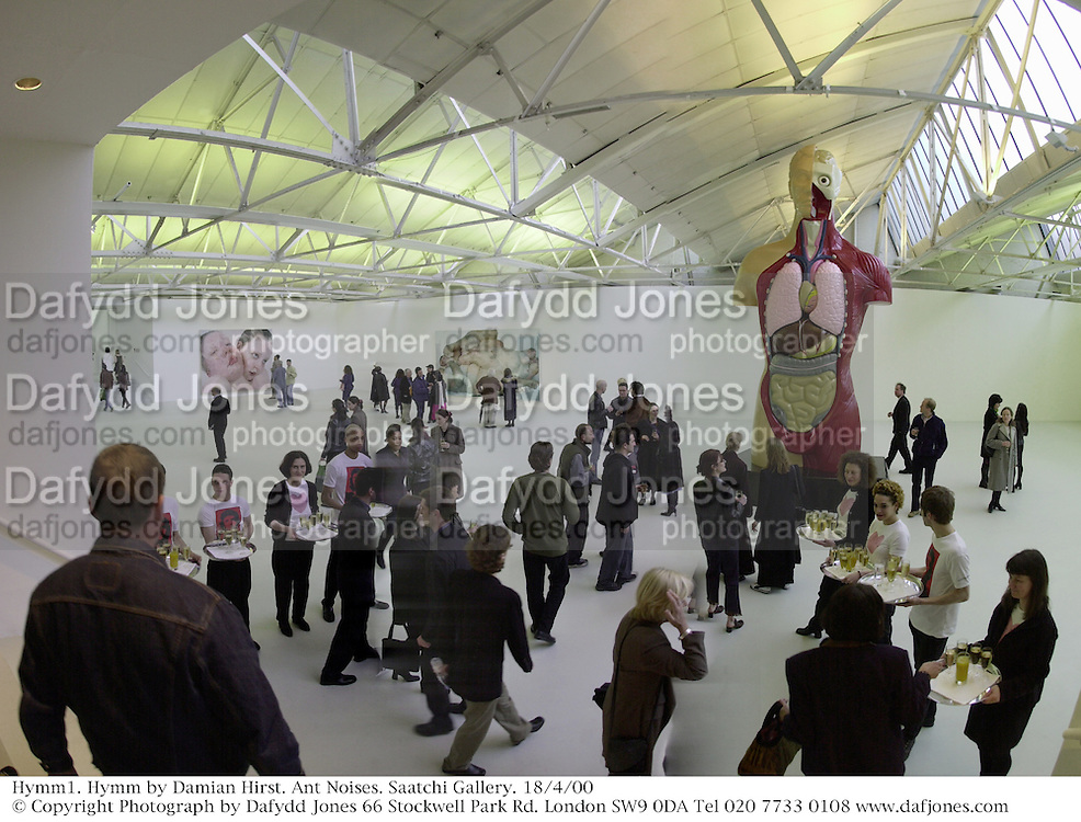 Hymm1. Hymm by Damian Hirst. Ant Noises. Saatchi Gallery. 18/4/00<br />