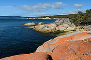 Oceania, Australia; Australian; Tasmania; Bay of Fires