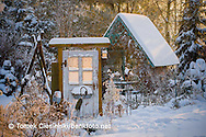Winter cottage garden