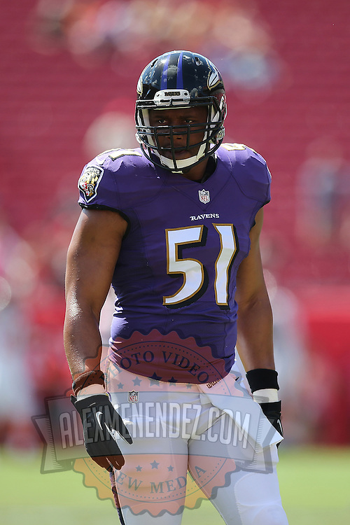 TAMPA, FL - OCTOBER 12:  Inside linebacker Daryl Smith #51 of the Baltimore Ravens is seen during an NFL football game at Raymond James Stadium on October 12, 2014 in Tampa, Florida. (Photo by Alex Menendez/Getty Images) *** Local Caption *** Daryl Smith