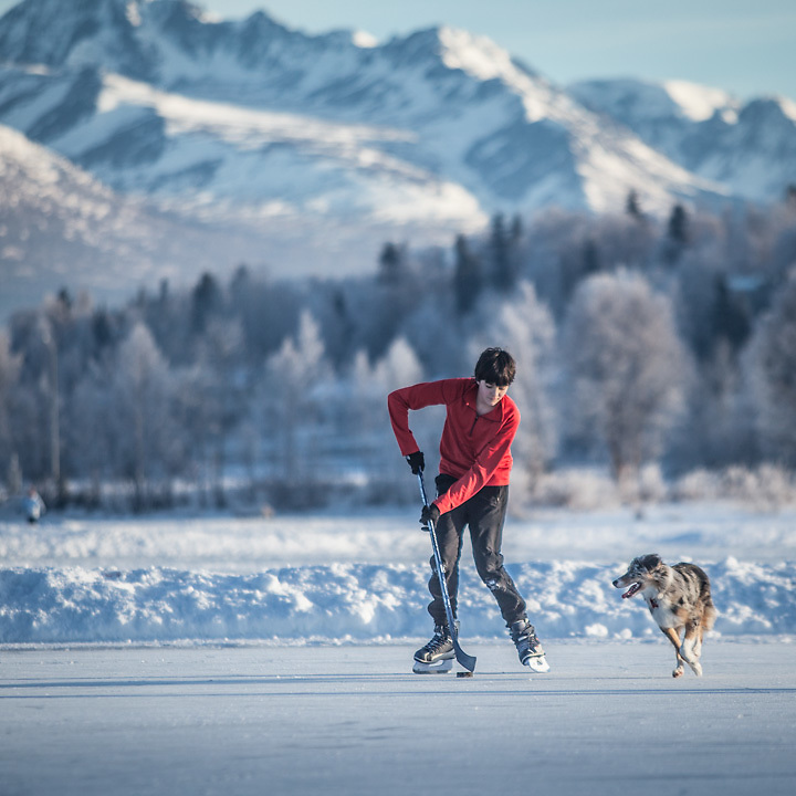 East High School (SWS) student Finn Hittson plays keep-away with Clark and Mitzi Mishler's 10 month old border collie, Molly,  at Westchester Lagoon, Anchorage
