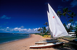 Bahia, Brasil. 1998..Jangadas na Praia do Forte./ Rafts in Forte's beach..Foto © Karla Brunet/Argosfoto