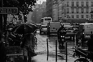 Spring showers in Ile de la Cite, Paris.