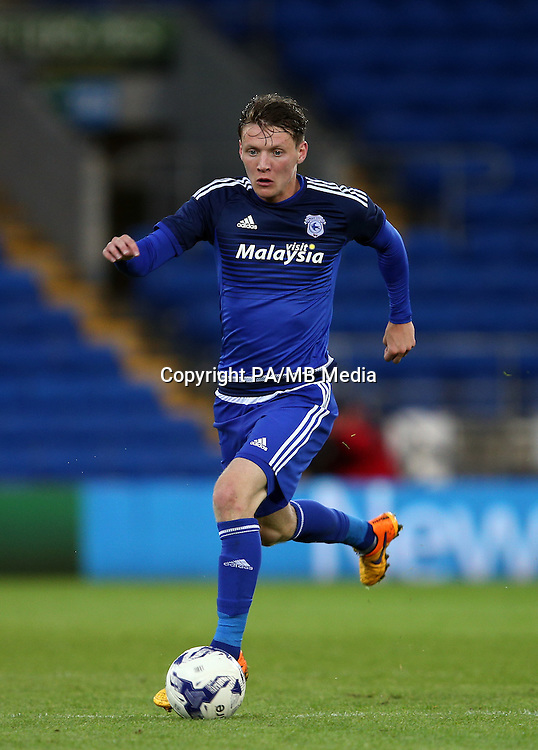 Joe Mason, Cardiff City