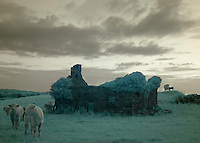 Burren landscape with ruin Ireland