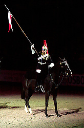 British Open Show Jumping at Hallam FM ArenaCopyright Paul David Drabble24th April 2003<br />