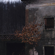 An abandoned house that was an easy target for the destructive fires.