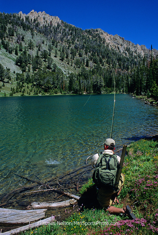 0811-F. A fly fisherman brings a trout to hand on an alpine lake in the Smokey Mountains of Idaho.
