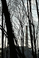View of a smoke stack as seen through a forest of Spring trees before they sprout their leaves, Seattle, WA USA