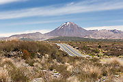 Looking North along the desert road towards Mt Ngauruhoe, New Zealand