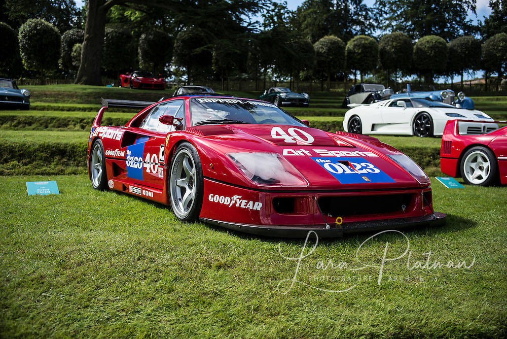 Heveningham Hall Concours 2016 Winner of Super Car Category