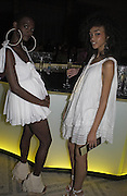 Nadine Willis and Bettine McCabe, British Fashion Awards, V. & A. Museum. 2 November 2004. ONE TIME USE ONLY - DO NOT ARCHIVE  © Copyright Photograph by Dafydd Jones 66 Stockwell Park Rd. London SW9 0DA Tel 020 7733 0108 www.dafjones.com