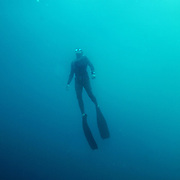 Ren Chapman ascends from a dive while off the coast of NC.