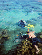 Snorkeling and scuba diving at Dam Tre Bay, a shallow, nearly-enclosed lagoon lined with mangrove forest, at the North end of Con Son Island.