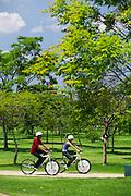 Belo Horizonte_MG, Brasil...Parque Ecologico Promotor Francisco Lins do Rego, tambem conhecido como Parque Ecologico da Pampulha, e um grande parque localizado nos bairros Ouro Preto e Bandeirantes, na regiao da Pampulha, em Belo Horizonte, Minas Gerais...Ecological Park Promotor Francisco Lins do Rego, also known as the Pampulha Ecological Park, is a large park located in Bandeirantes and Ouro Preto neighborhoods, in the region of Pampulha, Belo Horizonte, Minas Gerais...Foto: JOAO MARCOS ROSA / NITRO