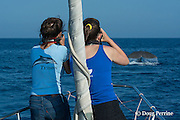 cetacean research program director Sabina Airoldi, on left with digital SLR camera, and researcher Giulia Bergamaschi, on right with laser range finder, of Tethys Research Institute, prepare to take a fluke photo and matched distance measurement that will enable a size estimate for the sperm whale, Physeter macrocephalus, which is starting to fluke up just ahead of the research vessel Pelagos in the Pelagos Sanctuary for Mediterranean Marine Mammals, Ligurian Sea, Mediterranean Sea, Italy