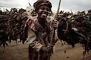 Contadino, Addis Ababa18 settembre 2014.  Christian Mantuano / OneShot