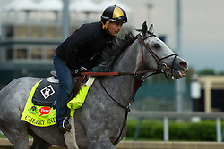 Derby 142 hopeful Cherry Wine with Faustino Aguilar up were on the track for training, Wednesday, May 04, 2016 at Churchill Downs in Louisville.