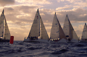 Sailboat race<br />