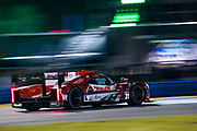 January 24-27, 2019. IMSA Weathertech Series ROLEX Daytona 24. #31 Whelen Engineering Racing Cadillac DPi, DPi: Felipe Nasr, Pipo Derani, Eric Curran