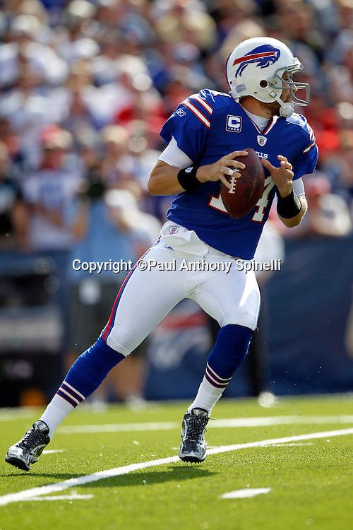 Buffalo Bills quarterback Ryan Fitzpatrick (14) drops back to pass during the NFL week 3 football game against the New England Patriots on Sunday, September 25, 2011 in Orchard Park, New York. The Bills won the game 34-31. ©Paul Anthony Spinelli