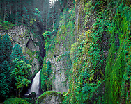 Wahclella Falls, sometimes called Tanner Falls is a waterfall along Tanner Creek, a tributary of the Columbia River, in the U.S. state of Oregon. It enters the river within the Columbia